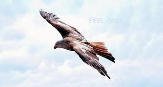 freedom-589576__180