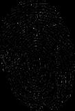 fingerprint-150159__180